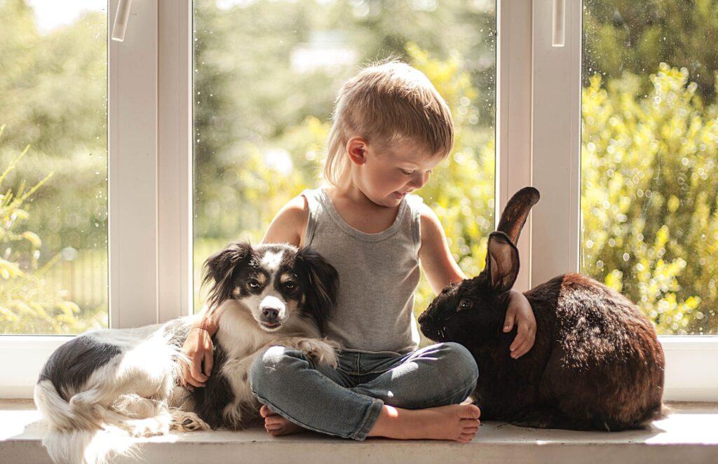 Уничтожение клопов безопасно для животных и детей